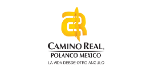 https://www.caminoreal.com/Hotels/Details/CR/MEX