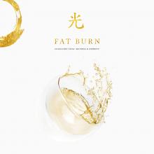 17 fatburn.png
